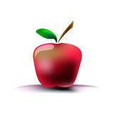 Image of a red apple on a white background with a shadow. Vector illustration. Drawing by hand Royalty Free Stock Images