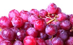 Image of red grape with water drops Stock Images