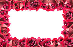 Image of red roses frame background Stock Images