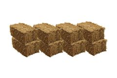 Image of rice straw briquette, white background stock photo