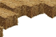 Image of rice straw briquette, white background royalty free stock images