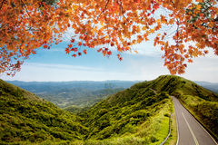 Image of road in autumn forest. Autumn landscape Royalty Free Stock Photo