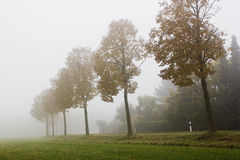An image of a road covered in fog Royalty Free Stock Photography