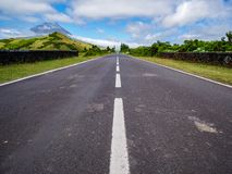 Image of road leading to a avanishing point with the mountain of Pico and vegetation stock image