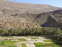 Image of ruins on Jebel Akhdar. In Oman royalty free stock photo