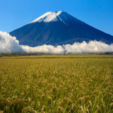 Image of sacred mountain of Fuji in the background at Japan Royalty Free Stock Images