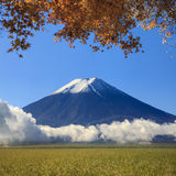 Image of sacred mountain of Fuji in the background at Japan Stock Images