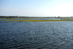 Floating Islands. This is an image of a salt water marsh with long narrow islands of sedge grass which look like they are floating on the inlet waters Royalty Free Stock Image
