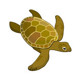 Image sea turtle Royalty Free Stock Photography