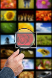 Image searching Royalty Free Stock Image