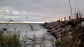 An image of the seawall stock video footage