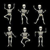 Image of set of funny dancing skeletons. Vector image of set of funny dancing skeletons on black background Stock Photography