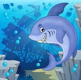 Image with shark theme 4 Stock Photo