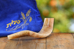 Image of shofar (horn) and prayer case with word talit (prayer) writen on it. room for text. rosh hashanah (jewish holiday) royalty free stock photo