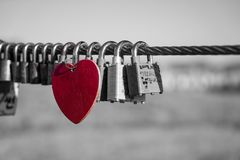 Red heart in a sea of love locks royalty free stock photography