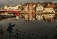 Whitby, Yorkshire, England - a man feeding seagulls. stock photos