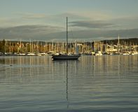 Marina in Oslo in the evening, a boat. royalty free stock photography