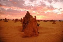 Image shows Pinnacles at sunset in Western Australia. Image shows Pinnacles at Nambung National Park in Western Australia. The Pinnacles desert is a group large Stock Images