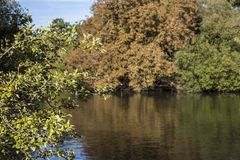 Tooting Commons - the pond. This image shows a pond in a park in Tooting Commons, South London stock photography