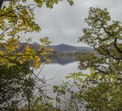 Lake District, England, the UK - bleak, gloomy autumnal day, a view through the trees. This image shows a view of a lake in Cumbria, Lake District. It was taken royalty free stock photography