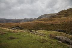 Lake District, Cumbria - autumnal fields. This image shows a view of a lake qin Cumbria, Lake District, England, the UK. It was taken on a dark, gloomy day in royalty free stock image