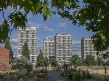 Spring in London, England, the UK; branches and tall buildings. royalty free stock photos