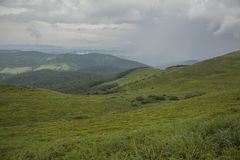 A view of Bieszczady Mountains, Poland, eastern Europe - nature and danger. This image shows a view of some mountains, green meadows full of blueberry plants royalty free stock photo