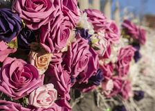 Streets of London, pink roses. This image shows a view of some pink roses in one of the streets in London. It was taken on a sunny day in April 2018 Royalty Free Stock Images