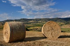 Image of the Sicilian countryside. stock image