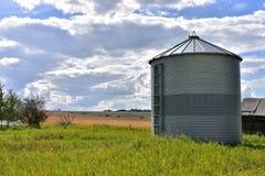 Single Metal Grain Silo. An image of a single metal grain silo on the edge of a field royalty free stock image