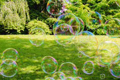 An image of soap bubble. Soap bubbles, green gras, green trees Stock Photography