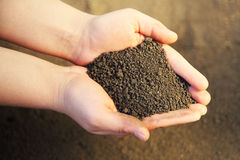 Image of soil Stock Photos