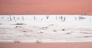 Sossusvlei, Namibia Stock Photos
