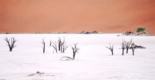Sossusvlei, Namibia. Image of Sossusvlei, Namibia, Africa stock photo