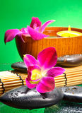 Image of spa therapy Royalty Free Stock Photo