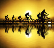 Image of sporty company friends on bicycles outdoors against sun. Set. Silhouette A lot phases of motion go of four 4 cyclist along shoreline coast Reflection Royalty Free Stock Photos