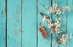 Image of spring white cherry blossoms tree next to wooden colorful pencils on blue wooden table. vintage filtered image Royalty Free Stock Images