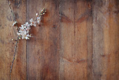 Image of spring white cherry blossoms tree on wooden table Royalty Free Stock Photo
