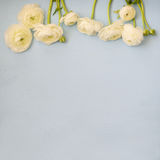 Image of spring white flowers on wooden background Royalty Free Stock Images