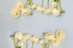 Image of spring white flowers on wooden background Stock Image