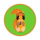 Image squirrel in headphones. Image squirrel in headphones on a green background royalty free stock photos