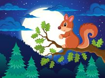 Image with squirrel theme 4 Stock Image