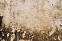 Image of the Stain on the wall Stock Image