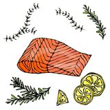 Image of Steak of Red Fish Salmon, Lemon and Herbs for Seafood Menu. Ink Vector Illustration Isolated On a White Royalty Free Stock Image