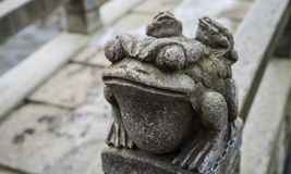 Stone frog royalty free stock photography