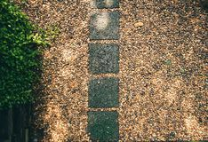 image Stone walkway in garden Stock Photography