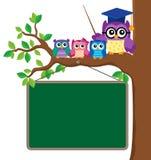 Image stylisée 6 de thème de hibou d'école illustration de vecteur