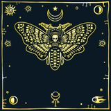 Image of the stylized moth the Dead Head, a decorative frame, space symbols. Royalty Free Stock Photography