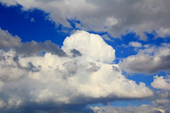 Image of summer fluffy sky. Image of the summer fluffy blue sky Royalty Free Stock Images
