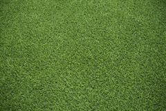 Green synthetic lawn in backyard Stock Image